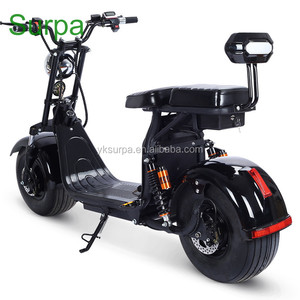 2018 new citycoco electric scooter chopper snow motorcycle/two removable battery fat tire electric snow scooter