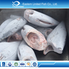 Seafood Wholesale Yellow Fin Tuna Price
