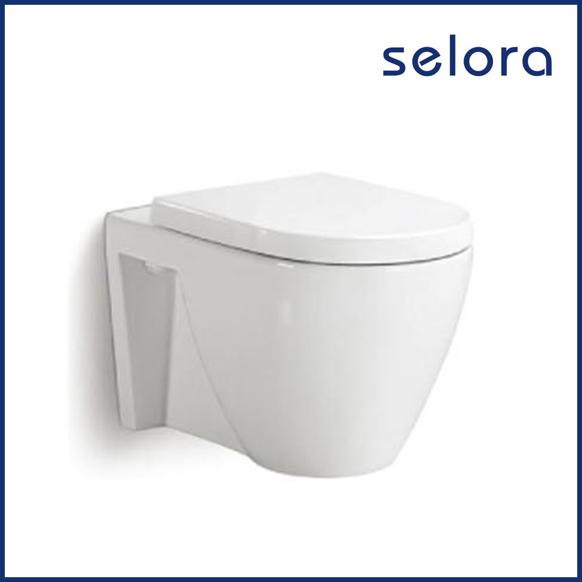cheap promotional concealed cistern wall mounted toilet bathroom commode with elegant design
