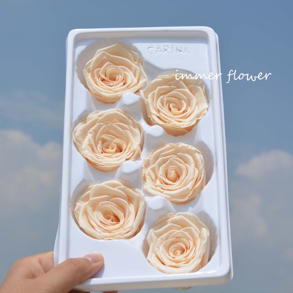 Quante Varietà Di Rose Esistono di lusso sempre reale di tocco del fiore conservato conserve rose holland -  buy roses conservati holland,conservato fiore,per sempre rosa product on