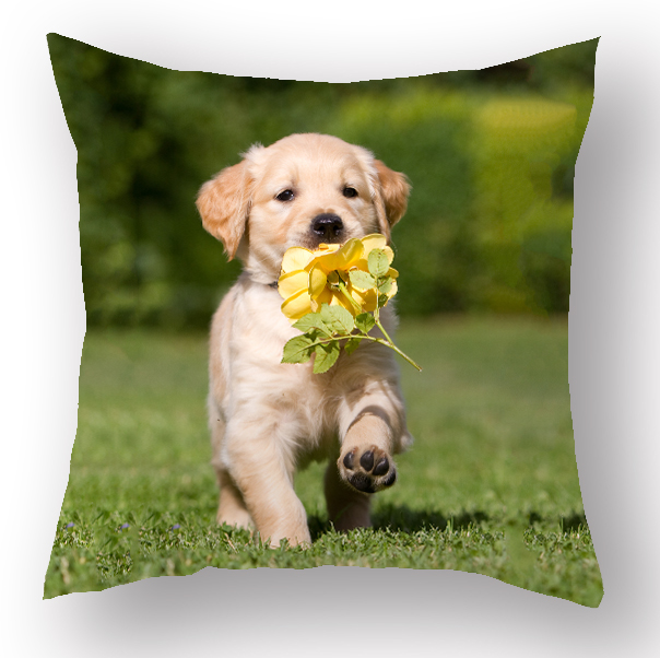 Latest wholesale cushion covers 3D photo printed sublimation cushion cover animal dog couch cushions pillow cover for sofa