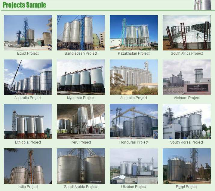 200ton Grain Used Farm Rice Grain Storage Bin Silo for Sale