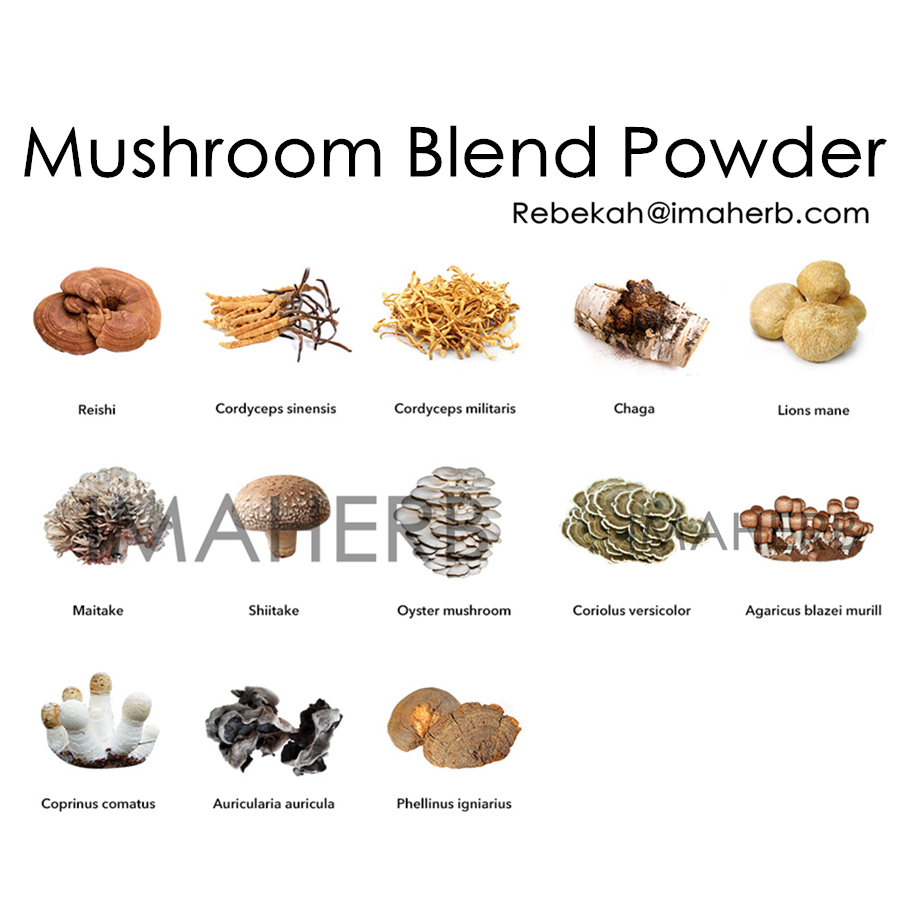 OEM Organic Mushroom Blend Extract Powder with Private label 8oz 100/G