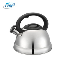 Silver Color Painting stainless steel whistling tea kettle