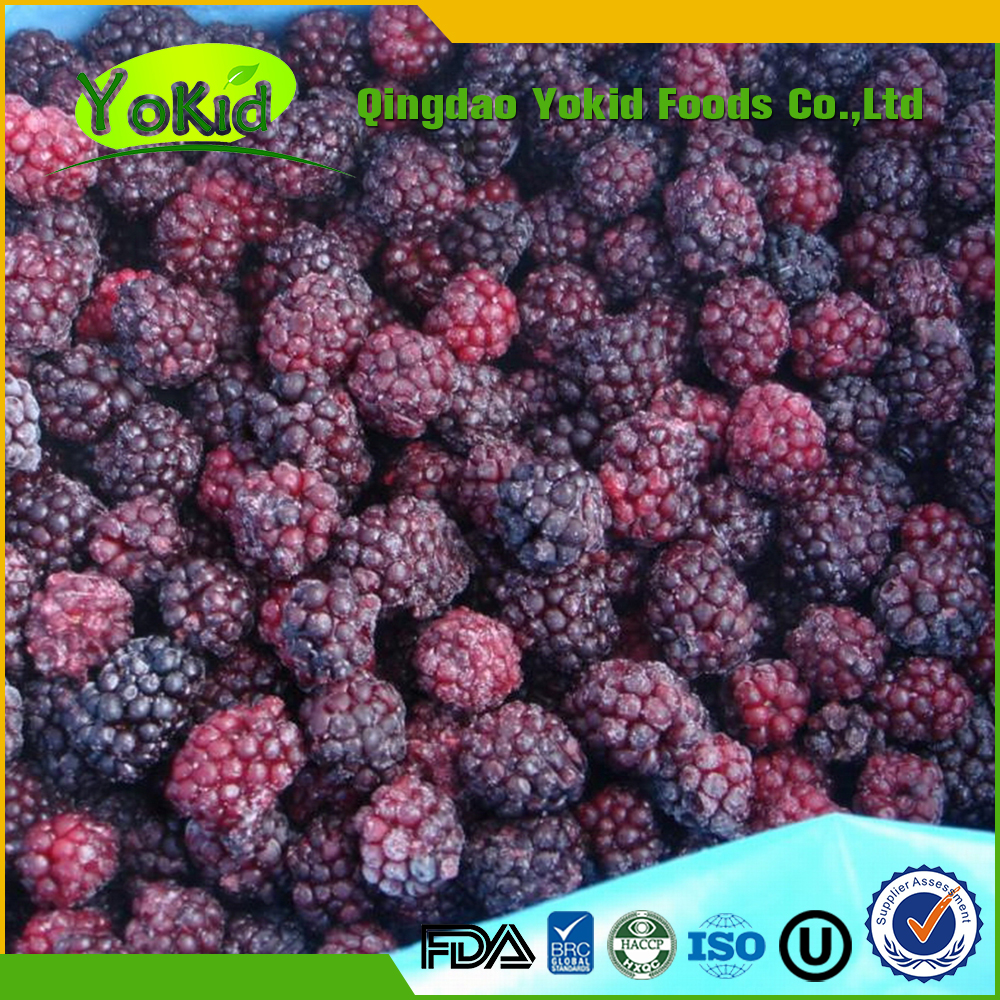 Passed BRC All Speficications bulk grade a frozen blackberry for export