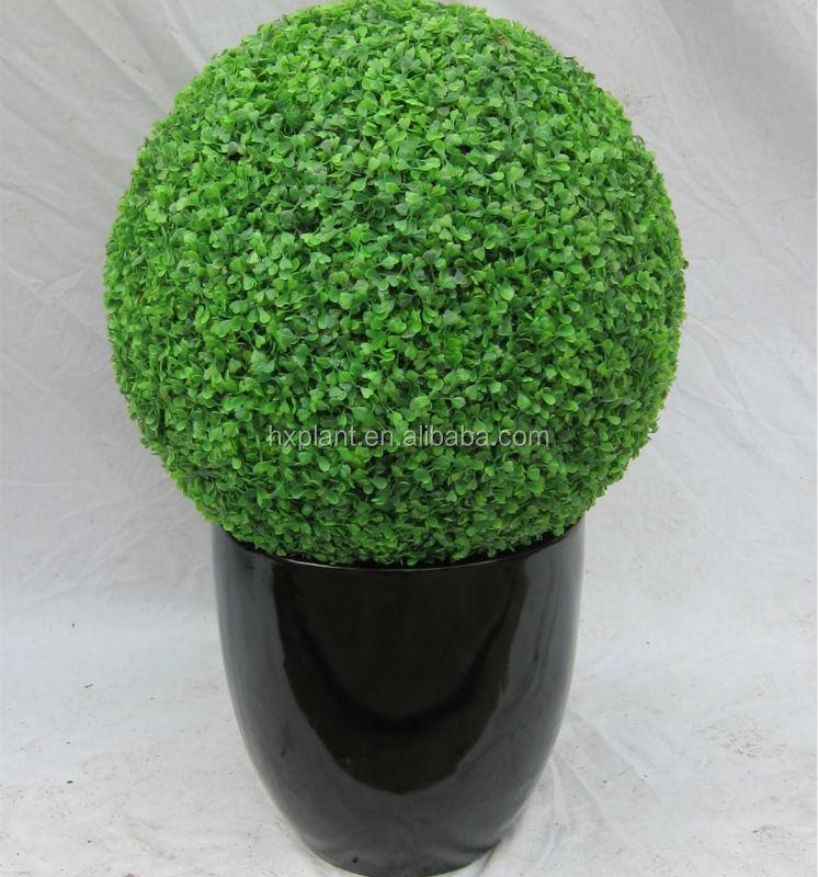 Ornamentalen kunstpflanzen formschnitt baum k nstliche - Buchsbaum formschnitt ...