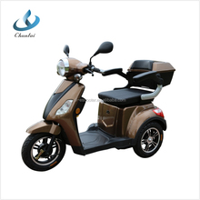 60V 1000W new 3 wheel electric scooter with EEC approve