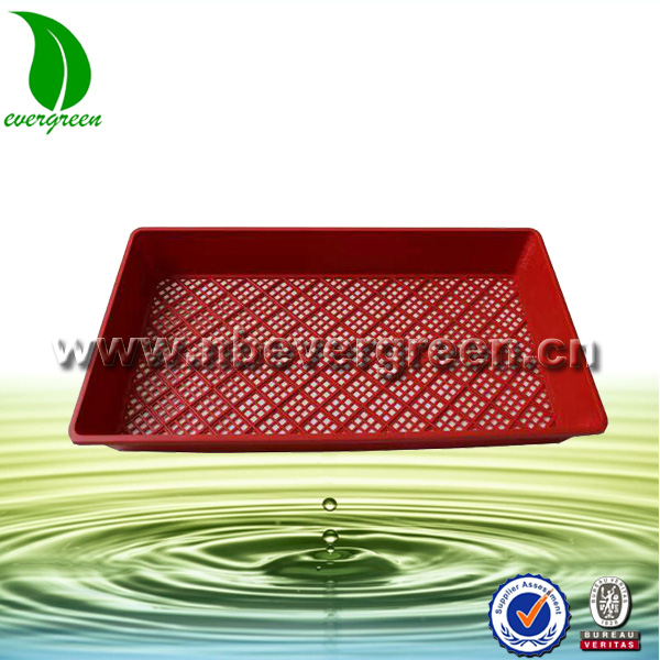 Good quality Plastic PP Square hydroponic rice seeding flat Tray for Greenhouse