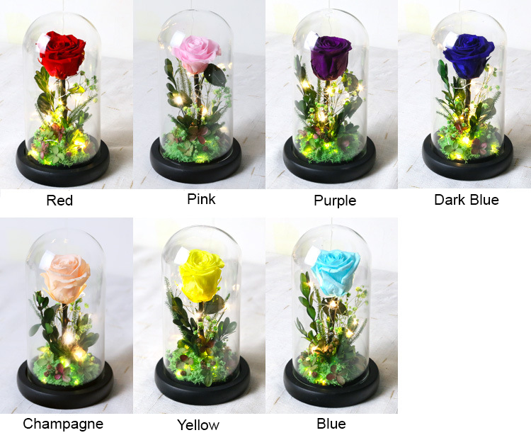 Wholesale Handmade Preserved Rose In Glass Dome With Gift Box