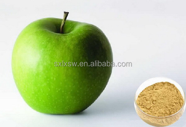 Super quality most popular apple root bark extract