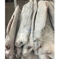 cheap price Frozen Sail Fish ,Sailfish HGT (headless, gutted,tailed) for sale