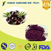 Competitive Price Anti-tumors Maqui berry extract 4:1-20:1