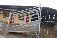 3m Economy with Swing Gate Cattle Loading Ramp