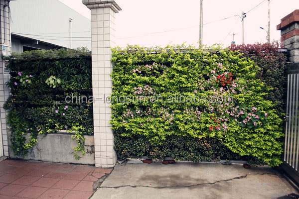 lsd 160104651 k nstliche pflanzen au en gr ne wand laub. Black Bedroom Furniture Sets. Home Design Ideas