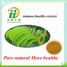 High Quality Mimosa Hostilis Root Bark Extract Powder in Competitive Price