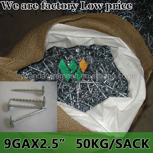 China factory low cheap price best quality export kenya market 9 GAUGE 2.5 inch 50KG SACK Roofing Nails