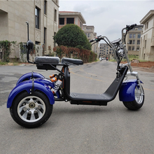Newest 1000 와트 Lithium battery Citycoco Trikes Golf 3 휠 전기 Scooter