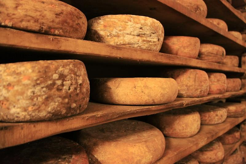 Canvas Prints Stretched Framed Fine Art Giclee Artwork For Wall <font><b>Decor</b></font> Ripening Italy <font><b>Italian</b></font> Maturation Cheese Food