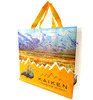 Promotion custom Colorful Reusable PP Printed Non Woven Shopping bags