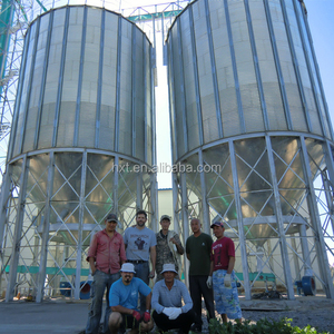 Taian Shelley Hopper bottom storing small used grain silos for sales