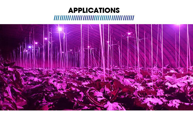 Best Priceslowes full spectrum cob desk white light led grow plant