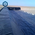 Permeable geomembrane pond liner in Kenya