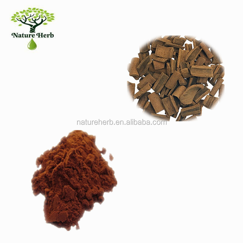 High Quality Lower Price Cinamon Bark Powder P.E. 20:1