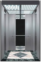 professional manufacturer of house/building/villa lift elevator