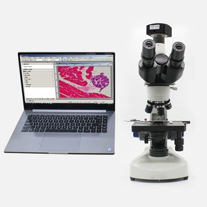 Biological confocal urgical neurosurgery zeiss hdmi microscope