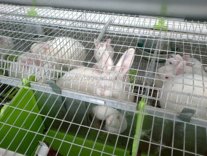 Buena Quailty batería conejo jaula con bandejas de plástico (2018 Venta caliente, precio bajo)