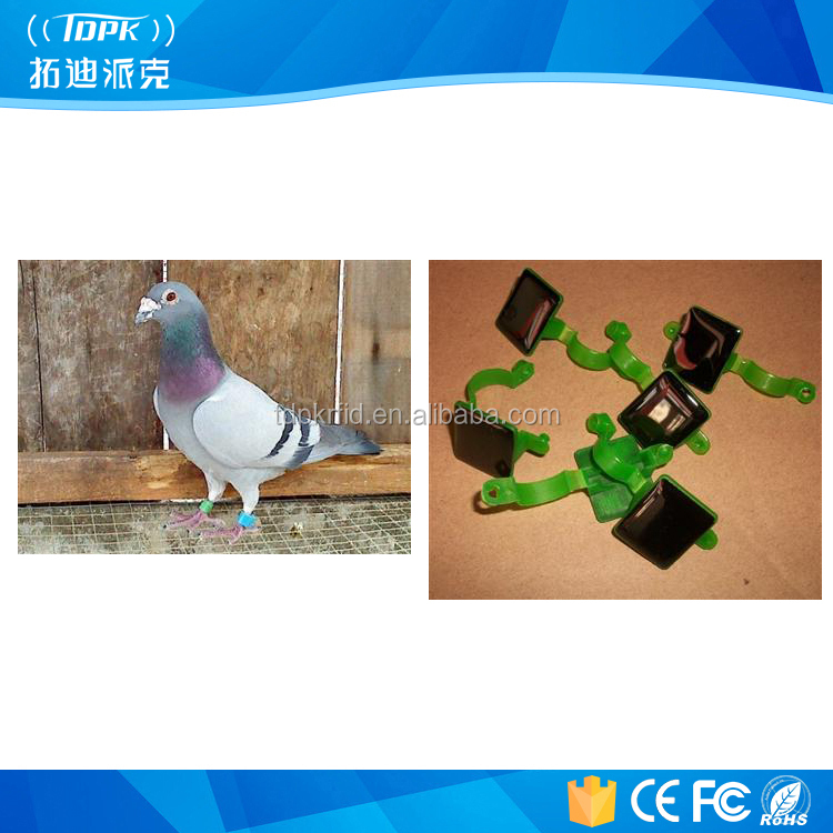 Free sample nfc chip animal tracking foot tags for pigeon racing