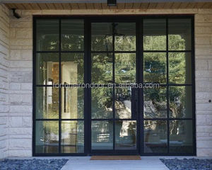 European style building carbon steel framed glass doors and window covering steel doors made with opaque glass and LOWE glass