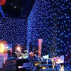 RGBW LED Star Curtain Light