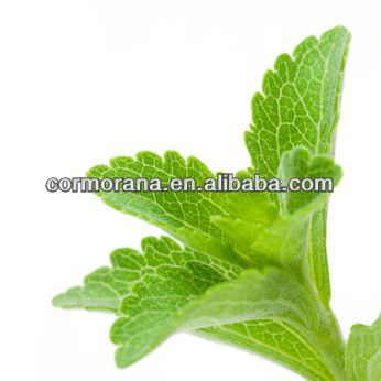natural food additives stevia extract,steviosides 95%,Stevia Extract 98%RA
