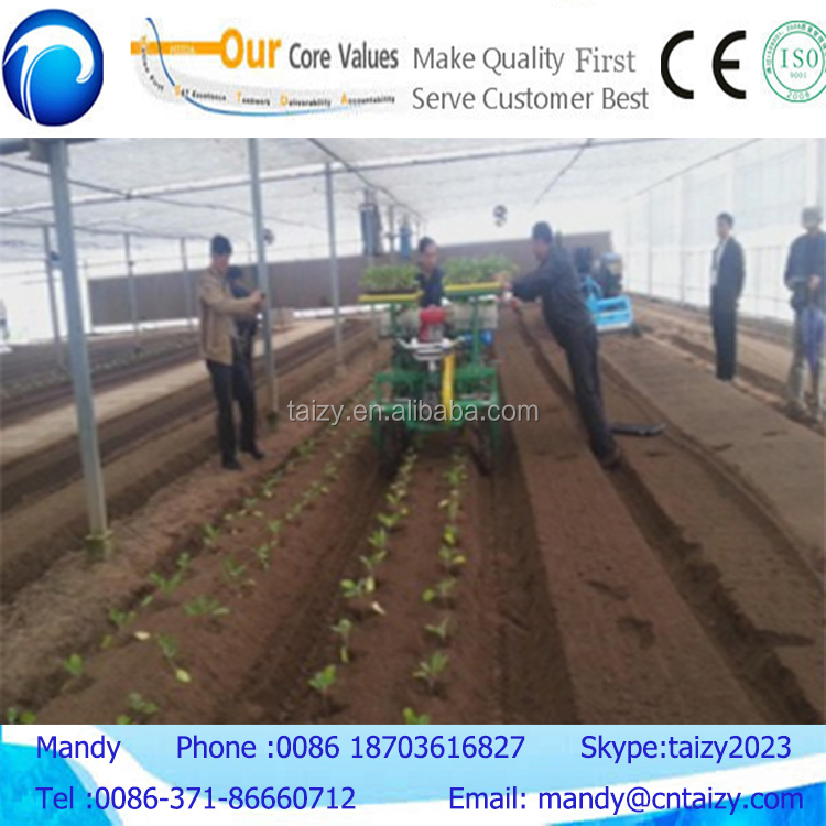 Best quality and high efficiency garlic planting machine for sale