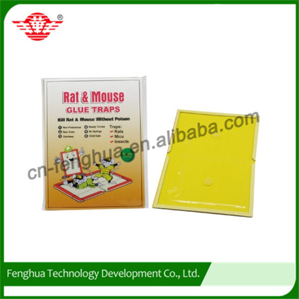 Convenient widely used roach glue traps