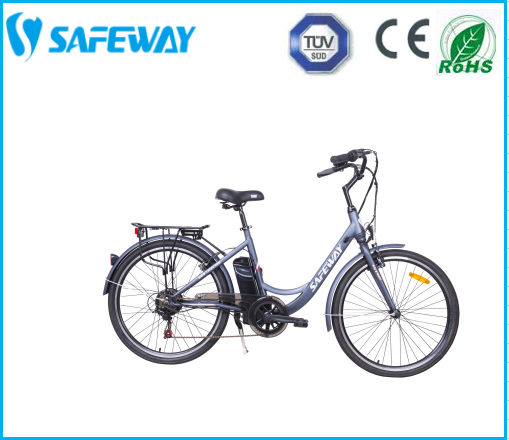 STEEL FRAME ELECTRONIC BICYCLE GT-F263