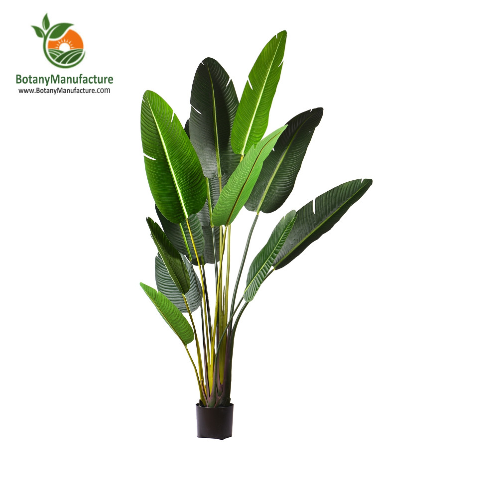 Indoor Mini Palm Trees 190cm Tall