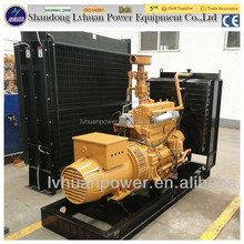 high efficiency small power biogas generator set 80kw best price