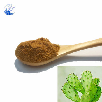 ISO Manufacturer supply high quality different specification cactus plant extract in stock