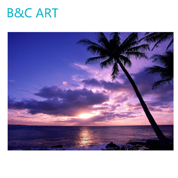 Simple Beautiful Color Sun Shine Oil Natural Scenery Coconut Tree
