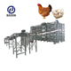 Poultry Farm Shed Chicken House for Broiler Chicken Layer Chicken