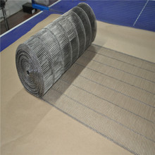 China Stainless steel ladder wire mesh conveyor belt