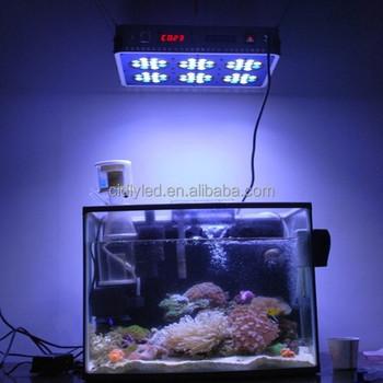 cidly zoet en zoutwater aquarium led verlichting aquarium led verlichting voor marine tank in