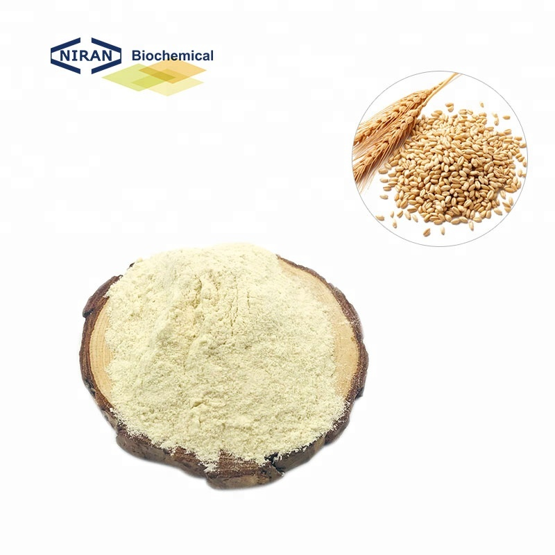 514b9c43588ad Yüksek Kaliteli Hidrolize Buğday Gluteni Üreticilerinden ve Hidrolize Buğday  Gluteni Alibaba.com'da yararlanın