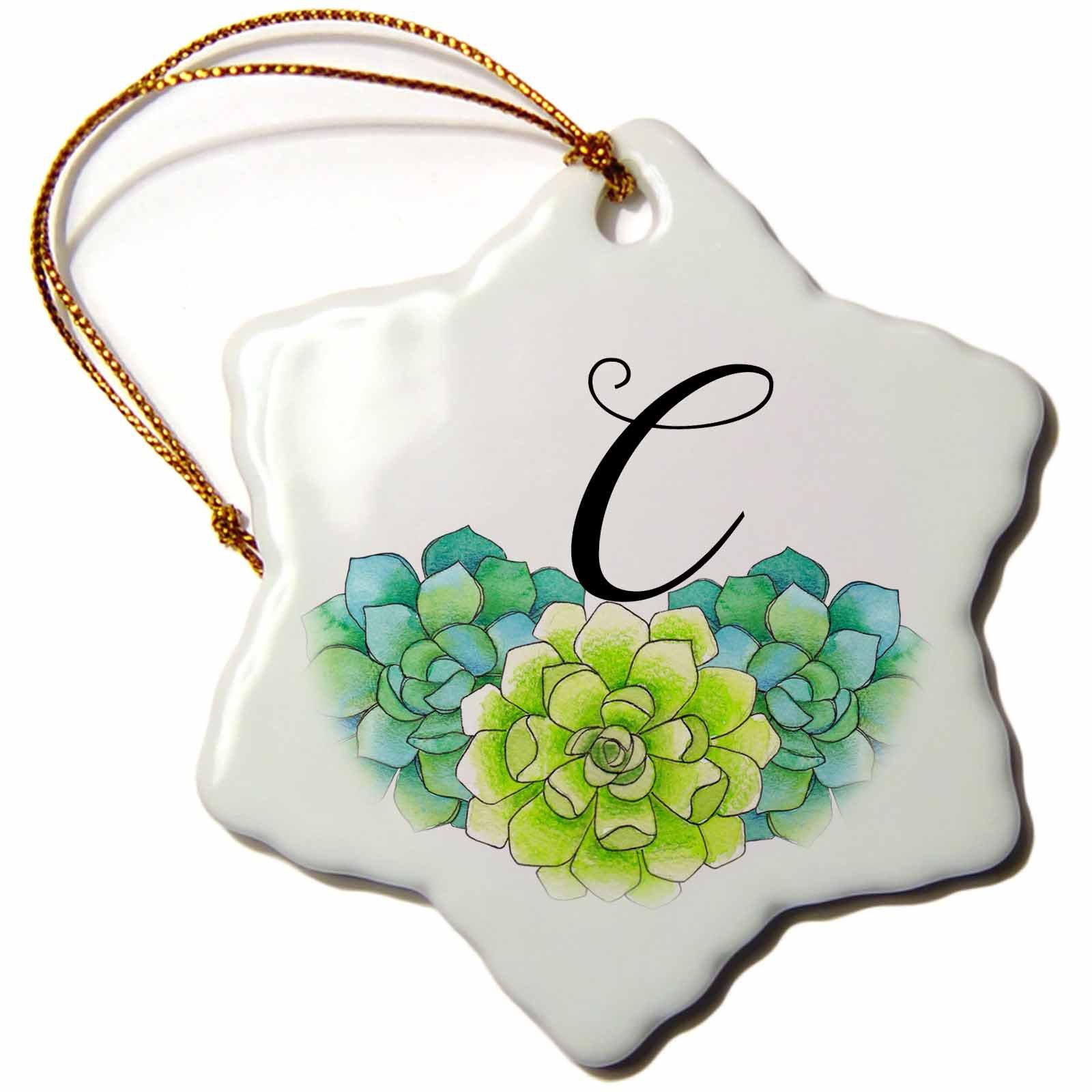 3dRose Anne Marie Baugh - Monograms - Pretty Watercolor Green Succulent Flowers Monogram C - 3 inch Snowflake Porcelain Ornament (orn_267752_1)
