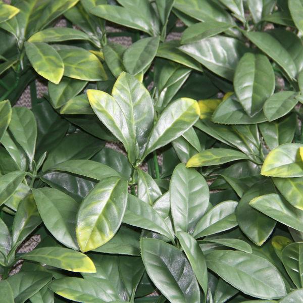 valla para cubrir jard n con plantas ornamentales vallado