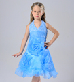 Princess dress kids dress sleeveless flower girl dress design Wholesale retail in stock