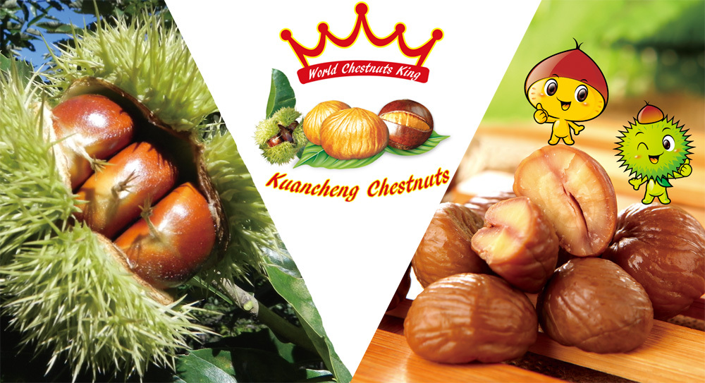 Organic Nut & Kernel Snacks Food---ready to eat chestnuts snacks