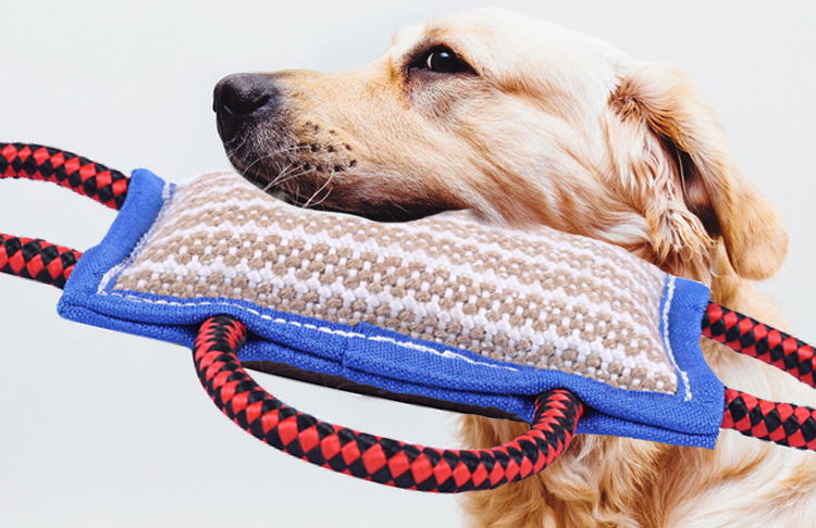 Newest pet accessories dog training bite pillow,high quality dog bite sleeve full protection